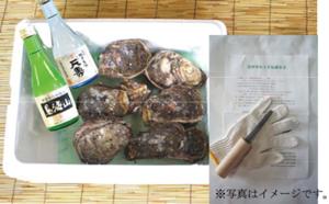 Iwagaki2014