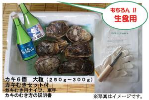Kaki_sake_2